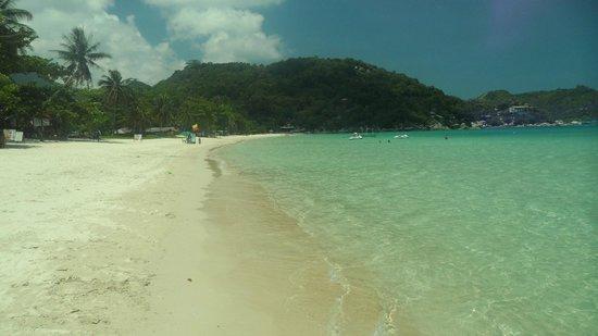 Koh Phangan Dreamland Resort: Strand und Meer