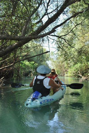 Preveza, Greece: eco toyr kayaking