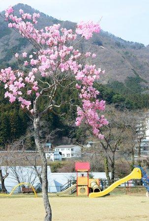 Kinugawa Onsen Fureai Bridge : yasiotutuji