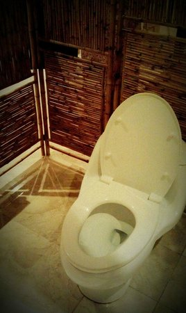 Villa Diana Bali: toilet seat (no water, only tissue)