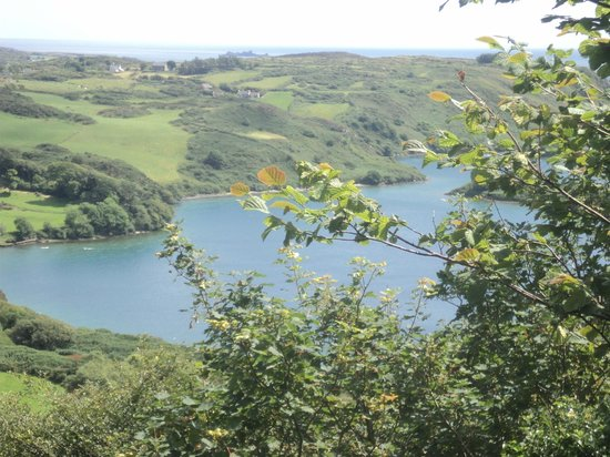 Lough Hyne: view  from  the hill trail