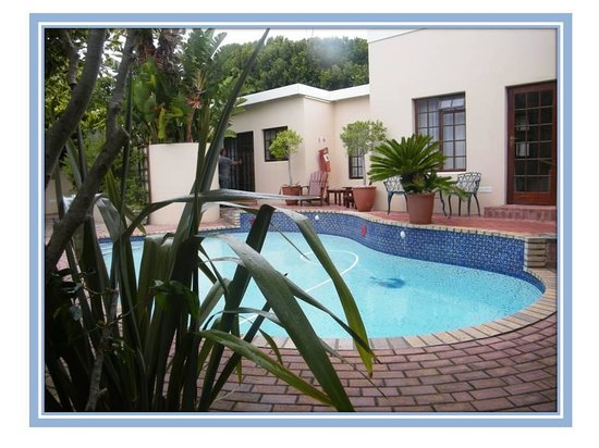 Kingfisher GuestHouse: LOVELY POOL
