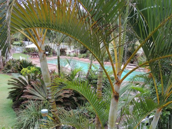 BreakFree Great Sandy Straits: Lap pool