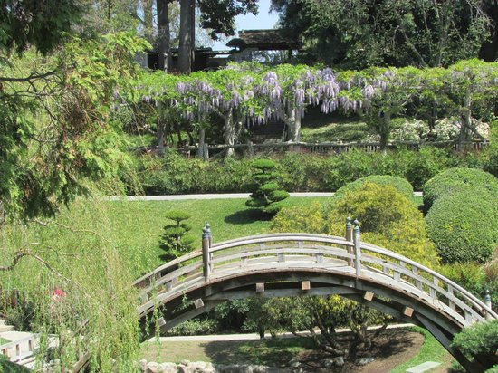 The Japanese Garden Picture Of The Huntington Library Art Collections And Botanical Gardens