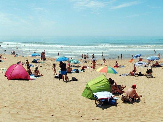 Camping Les Blancs Chenes : Les grandes plages de la Tranche sur Mer