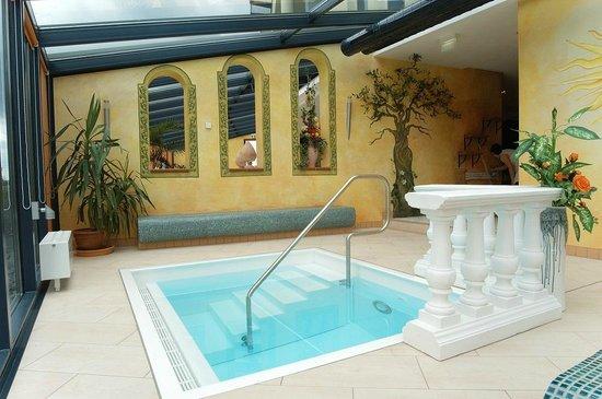 Top Hotel Meerane: Wellnessbereich