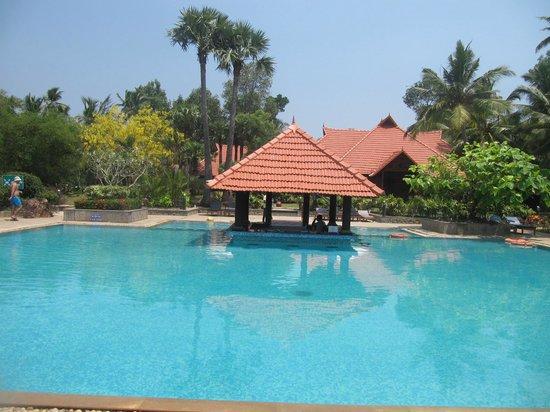 Poovar Island Resort: Pool Area