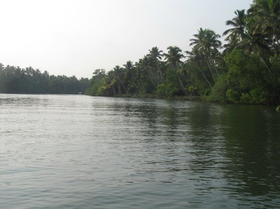 Poovar Island Resort: Beautiful Backwaters