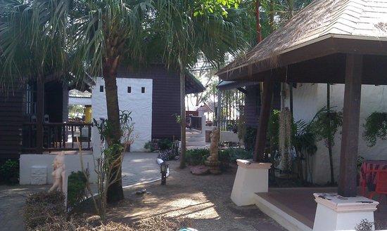 Naithon Beach Resort: grounds