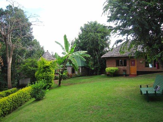 Songota Falls Lodge: Lodge grounds