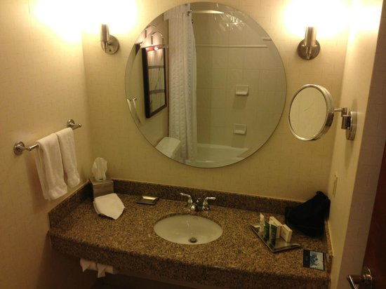 Hilton Boston Logan Airport: Bathroom