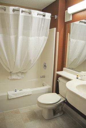 Microtel Inn & Suites by Wyndham Mineral Wells/Parkersburg: Guest Restroom