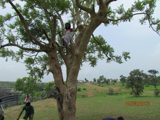 Tincha Fall: Kids enjoying