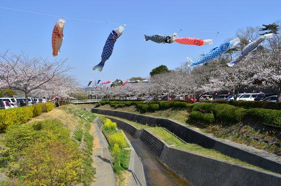 Takigashira Park : 滝頭公園