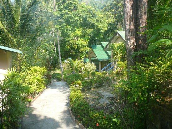 Anawin Bungalows : Gartenweg mit den Bungalows auf der rechten Seite