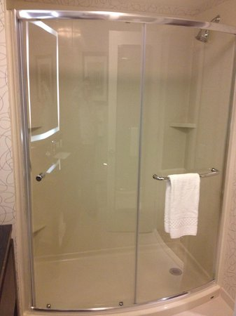Residence Inn Boston Logan Airport/Chelsea: Shower