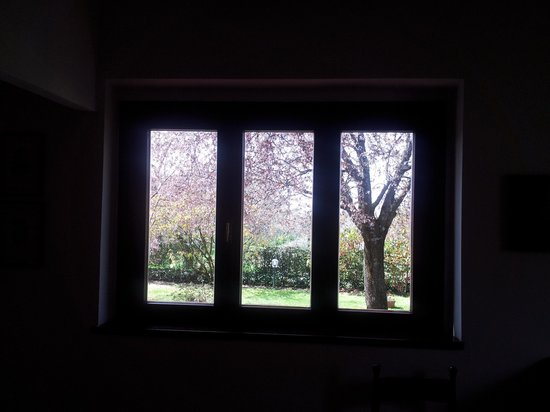 I Sicomori : Splendida vista sul giardino