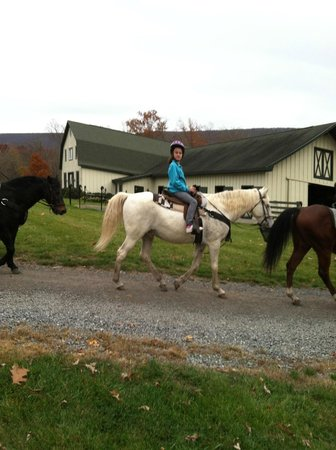 The Omni Homestead Resort: Trail rides
