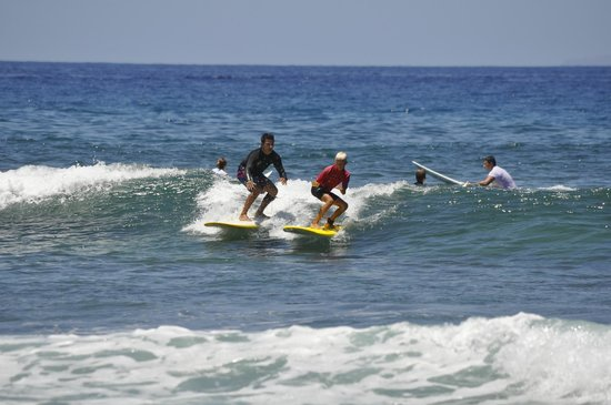 Palm Beach Surfing Experts