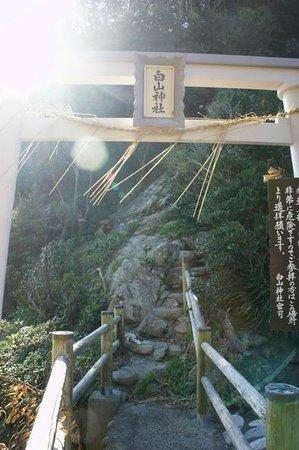 Hakusan Domon : 白山神社