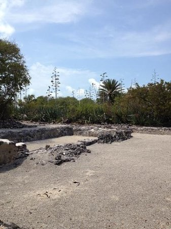 Indian Key State Historic Site : Indian Key ruins