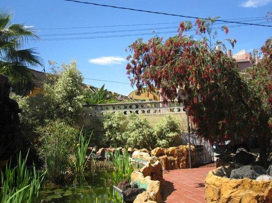 Hotel La Riviera: cozy yard