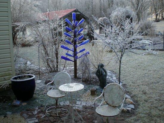 Meadowsweet Gardens Inn: Bottle tree in Winter