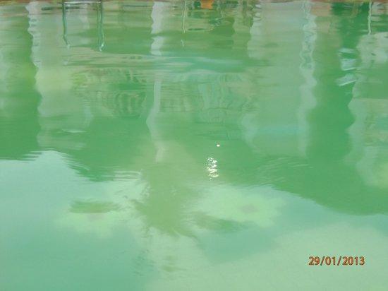 Bollywood Sea Queen Beach Resort: Swimming pool