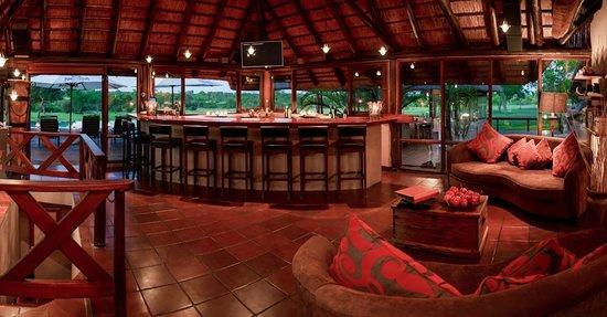نكورهو بوش لودج: Nkorho Bush Lodge Bar