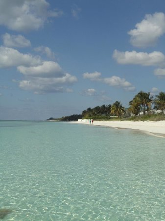 Viva Wyndham Fortuna Beach: beach