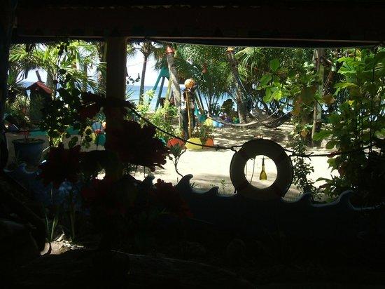 Takatuka Beach and Dive Resort: View