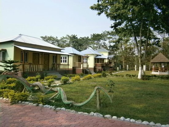 Jaldapara Wildlife Sanctuary, India: Standard Cottages