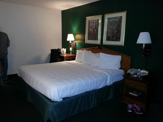 Quality Inn at Arlington Highlands: King size room