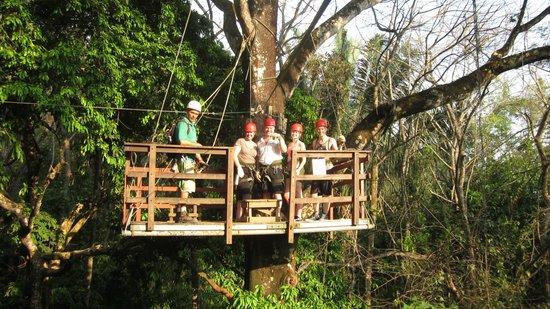 Hacienda Baru Lodge: Platform way up in the tree.
