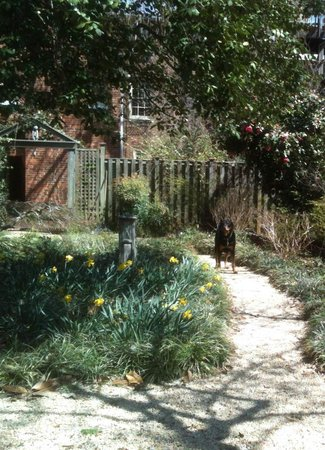 Two-O-One Bed and Breakfast : Spring is here!