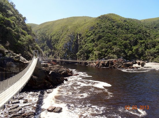 Lily Pond Country Lodge: Storms River suspension bridges