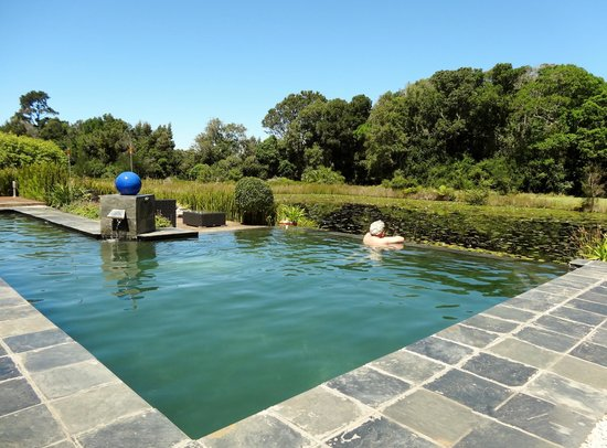 Lily Pond Country Lodge: Pool at Lily Pond