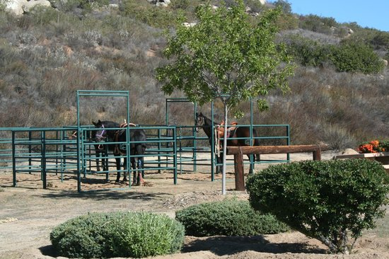 San Vicente Golf Resort: Horse corral across from the San Vicente Lodge.