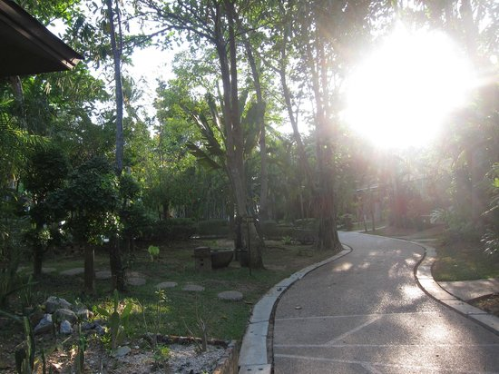 Lanta Sand Resort and Spa: garden