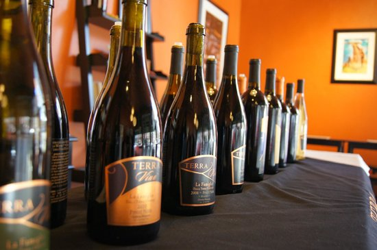 Terra Vina Wines: So many delicious wines to taste and purchase!