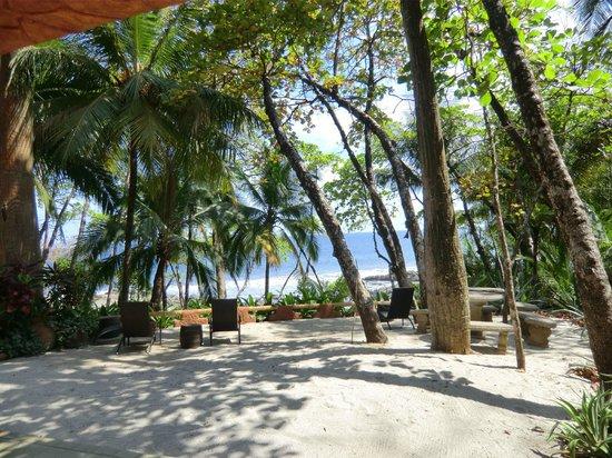 Ylang Ylang Beach Resort: Blick von der Terrasse zum Strand