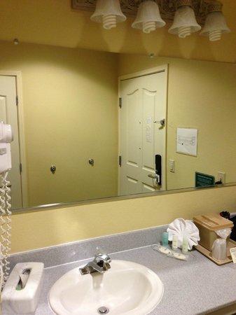 Comfort Suites Airport: Sink area and mirror