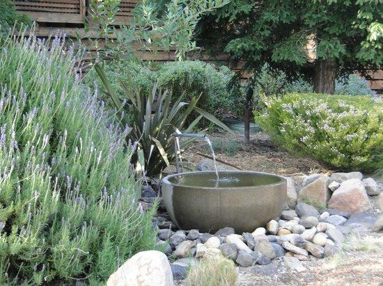Calistoga Ranch, An Auberge Resort: Por los alrededores