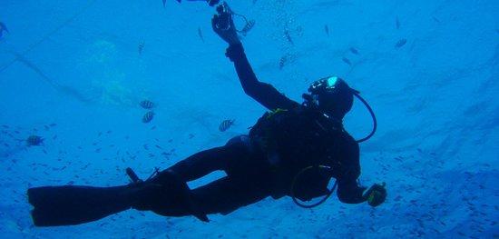 Piscis Diving : la catedral del submarinismo