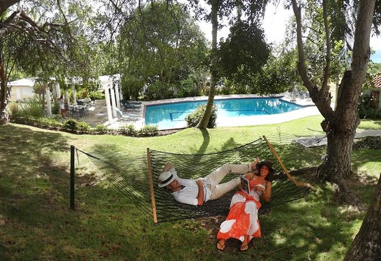 Hacienda Tamarindo: Pool and Hammocks