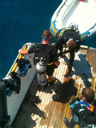 Emperor Divers Hurghada - Day Tours: Diving