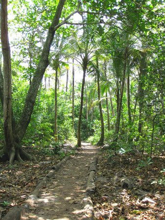 Little Corn Beach and Bungalow: The trail to LCB&B