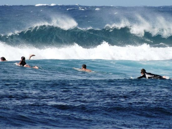 Banzai Pipeline On North Shore Of Oahu Hawaii Picture