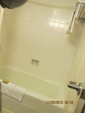 Anaheim Marriott: Más del baño
