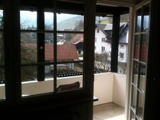 Rebstock Waldulm: Balkon
